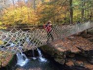 A kid in elementary school walking on a hanging bridge